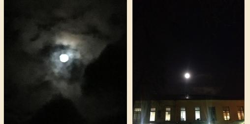 1 12 moons both