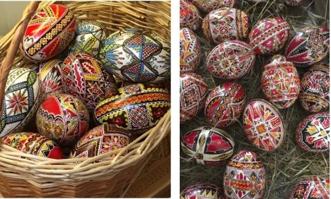 11 eggs
