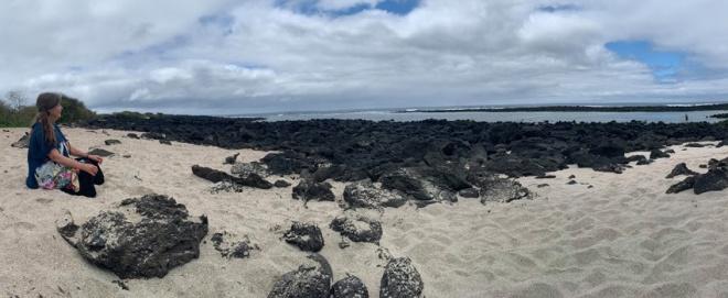 1 beach susan